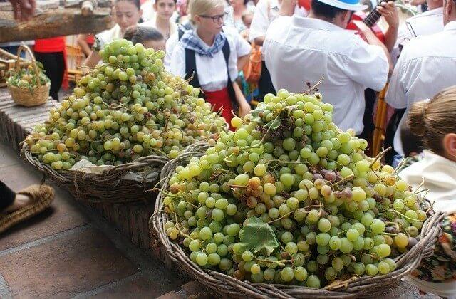 fêtes en Andalousie - Nuit du vin à Competa