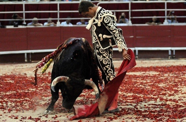 fêtes en Andalousie - La Goyesca